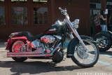 The-Harley_DSC3515-copy.jpg