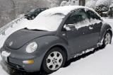 Snow Bug rides again