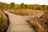 Huntley Meadows Wetlands Park and Wildlife Reserve (Virginia)