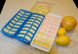 Seasonal citrus project