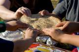 Seder In The Wilderness 2008