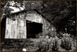 Old-Barn-Sketch2-B&W.jpg