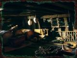 Pius VI Party Zone In Cargo Ship....