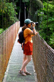 Free Lunch For Mosquitos, Hardworking Photographer On Hanging Bridge