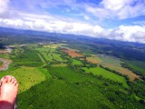 Hovering Over Pineapple Plantations, Quepos