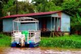 Life On Water, Tortuguero Selva