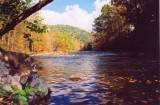 Williams River Upstream Fall View Sunny Day tb1009aar.jpg