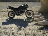 De moto's