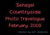 Senegal Countryside (February 2009)