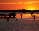 Titusville Sunset 1.JPG