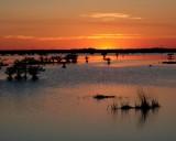 Titusville Sunset 2.JPG
