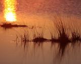 Titusville Sunset 3.JPG