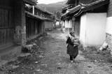 Life in Baisha