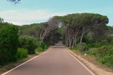 Caprera Road
