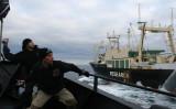 Sea-Shepherd-crew.jpg