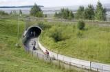 Coastal Trail-bicycle, run, xc ski in winter