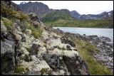 Lichens & Eagle Lake