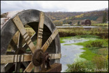 Waterwheel farm, Colesburg