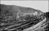 Buffalo & Susquehanna Train Yard, Galeton