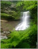 Campbell Run Falls 2