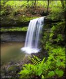 Campbell Run Falls #1