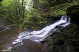 Campbell Run, upper falls