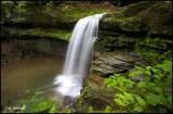 Campbell Run Falls 1