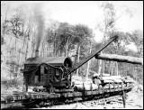Barnhart log loader