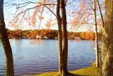 Pond at Sturbridge