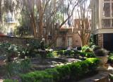 A Savannah garden
