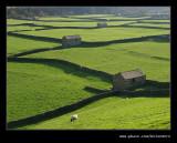 Swaledale Barns #10 (Gunnerside), Yorkshire Dales