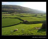 Swaledale Barns #11 (Gunnerside), Yorkshire Dales