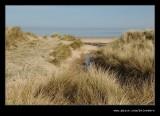 Cresswell Dunes #2, Northumberland