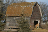 Little barn on the prairies