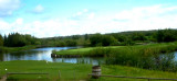 Goose Hummock Golf Course