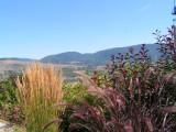 Overlooking Vernon,BC