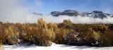 Freezing Fog Lifts