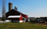 A Beauty of a Barn