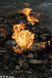 Chuhuo Natural Fire DSC_4245
