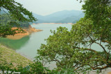 Shing Mun Reservoir DSC_0514