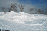 Snow Scene 03