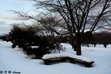 Snow Scene 04