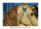 Merry-go-round horses 22