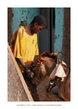 Wonderful Mali 21