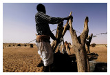 Mauritanie - Puiser la vie 14