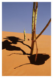 Mauritanie - Puiser la vie 32