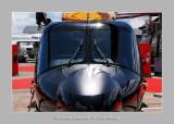 Salon Aeronautique du Bourget 2009 - 18