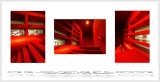 Cite de l'architecture et du patrimoine