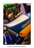 Retromobile 2010 - 12