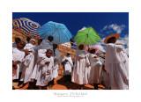 Madagascar - The Red Island 58